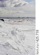 Купить «Апрельский лед на ярком солнце, Финский залив, Санкт-Петербург», фото № 425718, снято 8 апреля 2007 г. (c) Max Toporsky / Фотобанк Лори