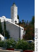 Купить «Мечеть. Сиди Бу Саид. Тунис.», фото № 426050, снято 26 августа 2008 г. (c) Руслан Керимов / Фотобанк Лори