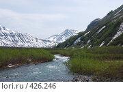 Купить «Горная река и вулканы», фото № 426246, снято 15 июня 2008 г. (c) Евгений Слобоженюк / Фотобанк Лори