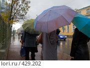 Купить «Дождь в городе», фото № 429202, снято 18 октября 2007 г. (c) Argument / Фотобанк Лори