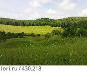 Купить «Зеленые просторы», фото № 430218, снято 6 июля 2008 г. (c) Айрат Петров / Фотобанк Лори