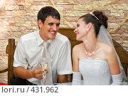 Купить «Свадьба. Молодожёны счастливо улыбаются.», фото № 431962, снято 23 августа 2008 г. (c) Федор Королевский / Фотобанк Лори