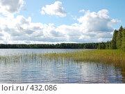Купить «Лесное озеро», фото № 432086, снято 23 августа 2008 г. (c) Катыкин Сергей / Фотобанк Лори