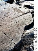 Купить «Древние петроглифы на Онежском озере в Карелии», фото № 433130, снято 12 августа 2008 г. (c) Алексей Судариков / Фотобанк Лори