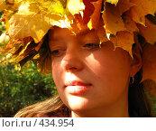 Осеннее настроение. Стоковое фото, фотограф Алексей Иванов / Фотобанк Лори