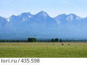 Купить «Тункинская долина», фото № 435598, снято 14 июня 2008 г. (c) Виталий Попов / Фотобанк Лори