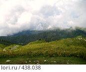 Купить «Альпийские луга Абхазии», фото № 438038, снято 22 августа 2007 г. (c) Андрей / Фотобанк Лори