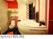 Купить «Интерьер ванной комнаты», фото № 439302, снято 3 сентября 2008 г. (c) Vdovina Elena / Фотобанк Лори