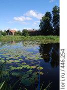Купить «Домик на болоте», фото № 446254, снято 17 июля 2008 г. (c) Мария Левочкина / Фотобанк Лори