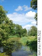 Купить «Летний день», фото № 446522, снято 17 июля 2008 г. (c) Мария Левочкина / Фотобанк Лори