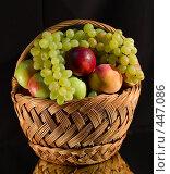 Купить «Корзина с фруктами на чёрном фоне», фото № 447086, снято 1 августа 2008 г. (c) Александр Шутов / Фотобанк Лори