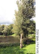 Купить «Дерево у воды», фото № 448602, снято 9 сентября 2008 г. (c) Рягузов Алексей / Фотобанк Лори