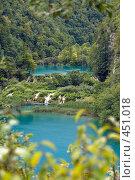 Купить «Плитвецкие озера, вид сверху», фото № 451018, снято 16 августа 2008 г. (c) Pukhov K / Фотобанк Лори