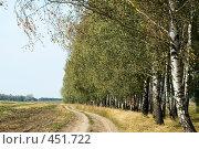 Купить «Сельская дорога, проходящая мимо березовой рощи», фото № 451722, снято 6 сентября 2008 г. (c) Ирина Доронина / Фотобанк Лори