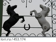 Купить «Украшение ворот или Кони педальные. Бийск», эксклюзивное фото № 453174, снято 6 сентября 2008 г. (c) Free Wind / Фотобанк Лори