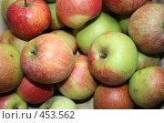 Купить «Яблоки», фото № 453562, снято 6 сентября 2008 г. (c) Александр Бутенко / Фотобанк Лори