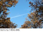 Небо, осень, самолет. Стоковое фото, фотограф Сергей Усс / Фотобанк Лори