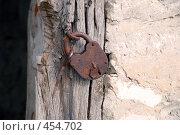 Купить «Старый, но крепкий», фото № 454702, снято 22 октября 2007 г. (c) Владислав Грачев / Фотобанк Лори