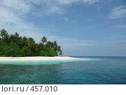 Купить «Вид на берег острова с пальмами. Мальдивы.», фото № 457010, снято 27 ноября 2007 г. (c) Лев Сатаров / Фотобанк Лори