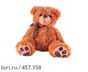 Купить «Плюшевый коричневый медведь на белом фоне», фото № 457158, снято 14 сентября 2008 г. (c) Игорь Качан / Фотобанк Лори