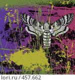 Купить «Ночная бабочка мертвая голова», иллюстрация № 457662 (c) Татьяна Петрова / Фотобанк Лори