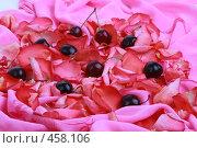 Купить «Черешня в лепестках», фото № 458106, снято 3 июля 2008 г. (c) Марина / Фотобанк Лори
