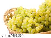 Купить «Свежий виноград в корзинке на белом фоне», фото № 462354, снято 24 августа 2008 г. (c) Мельников Дмитрий / Фотобанк Лори