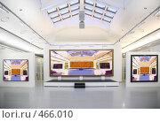 Купить «В художественной галерее», фото № 466010, снято 18 января 2020 г. (c) Losevsky Pavel / Фотобанк Лори