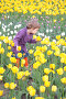 Девочка среди тюльпанов, фото № 467858, снято 21 января 2017 г. (c) Losevsky Pavel / Фотобанк Лори