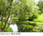 Купить «Павловск, пригород Петербурга, парк», фото № 469698, снято 15 июля 2008 г. (c) ИВА Афонская / Фотобанк Лори