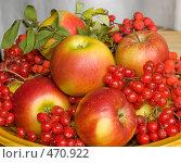 Купить «Дары осени», фото № 470922, снято 21 сентября 2008 г. (c) Ирина Солошенко / Фотобанк Лори