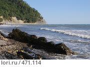 Купить «Скалы на фоне моря, курорт Джанхот», фото № 471114, снято 31 августа 2008 г. (c) Игорь Архипов / Фотобанк Лори