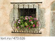 Купить «Окно деревенского дома в Провансе», фото № 473026, снято 27 июля 2008 г. (c) Татьяна Лата / Фотобанк Лори
