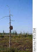 Купить «Заржавелый дорожный знак», фото № 473554, снято 24 августа 2008 г. (c) Назаренко Ольга / Фотобанк Лори