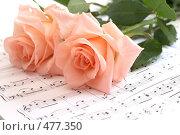 Купить «Розы лежат на нотах», фото № 477350, снято 29 июня 2008 г. (c) Cветлана Гладкова / Фотобанк Лори
