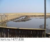 Купить «Лечебные грязи», фото № 477838, снято 20 августа 2008 г. (c) Нетичук Александр / Фотобанк Лори