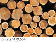 Купить «Строительный лес», фото № 479554, снято 25 июня 2008 г. (c) Vladimir Kolobov / Фотобанк Лори