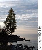 Купить «Вечер на озере», фото № 480186, снято 24 сентября 2008 г. (c) Тарановский Д. / Фотобанк Лори