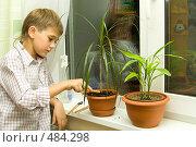 Купить «Мальчик ухаживает за цветами», фото № 484298, снято 29 сентября 2008 г. (c) Ольга Красавина / Фотобанк Лори