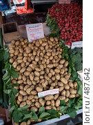 Молодой картофель, цены в евро. Стоковое фото, фотограф Ярослав Никитин / Фотобанк Лори