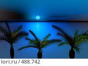 Купить «Тропический закат», иллюстрация № 488742 (c) ElenArt / Фотобанк Лори