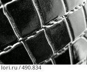 Купить «Черная крокодиловая кожа», фото № 490834, снято 29 января 2020 г. (c) ElenArt / Фотобанк Лори