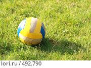 Мяч на футбольном поле. Стоковое фото, фотограф Сергей / Фотобанк Лори