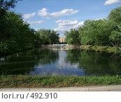 Купить «Малый пруд Новодевичьего монастыря», фото № 492910, снято 16 июня 2007 г. (c) Александр Тёмин / Фотобанк Лори