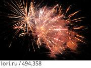 Купить «Фейерверк. Салют. Праздник.», фото № 494358, снято 4 октября 2008 г. (c) Федор Королевский / Фотобанк Лори