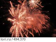 Купить «Фейерверк. Салют. Праздник.», фото № 494370, снято 4 октября 2008 г. (c) Федор Королевский / Фотобанк Лори