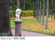 Купить «Юноша. Скульптурный портрет. Внутренний садик. Павловск.», эксклюзивное фото № 495906, снято 4 октября 2008 г. (c) Александр Щепин / Фотобанк Лори