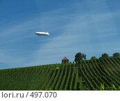 Купить «Дирижабль над виноградниками», фото № 497070, снято 10 августа 2008 г. (c) Пичугина Виктория / Фотобанк Лори