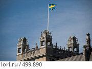 Флаг Швеции (2008 год). Стоковое фото, фотограф Ярослав Никитин / Фотобанк Лори