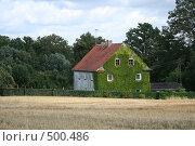 Купить «Увитый плющом сельский дом с черепичной крышей», фото № 500486, снято 17 августа 2008 г. (c) Cangaroo / Фотобанк Лори